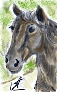 Aranyosi Ervin: Van egy lovam