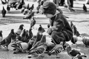 Aranyosi Ervin: Isten galambjai