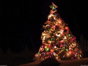 Aranyosi Ervin: Karácsonyi gondolatok