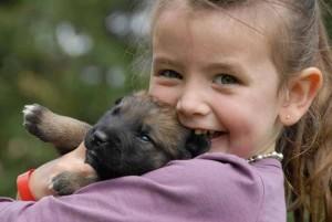 Aranyosi Ervin: Kis állat - nagy felelősség