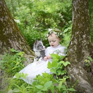 az erdő kis tündére