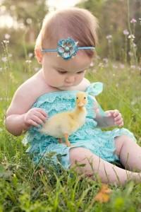 kicsi kacsa