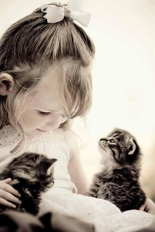 1 kislány 2 cica