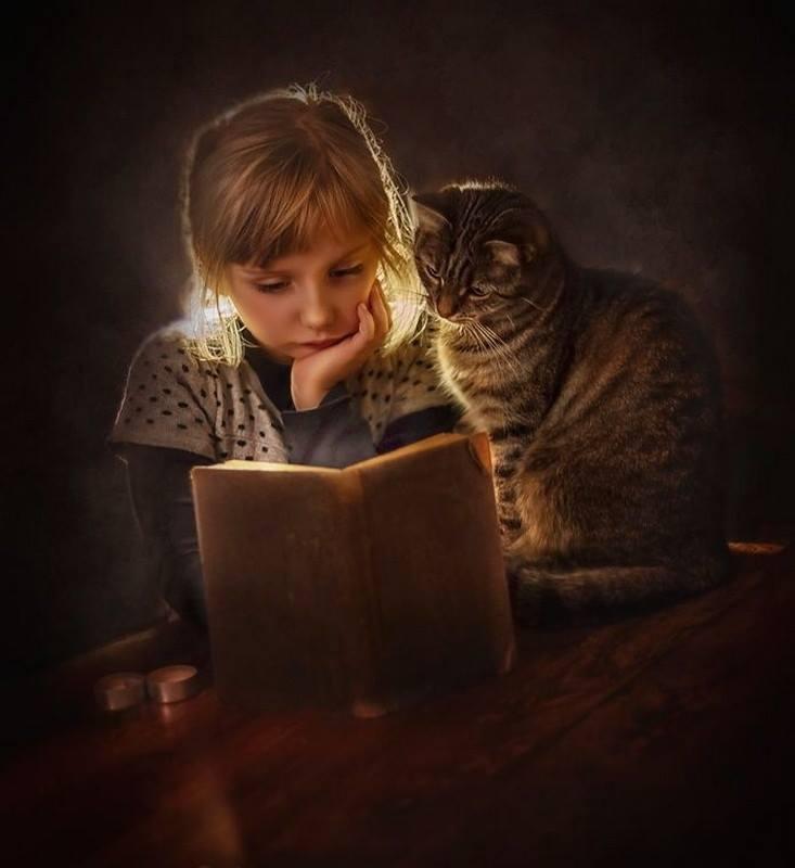 a könyv barát