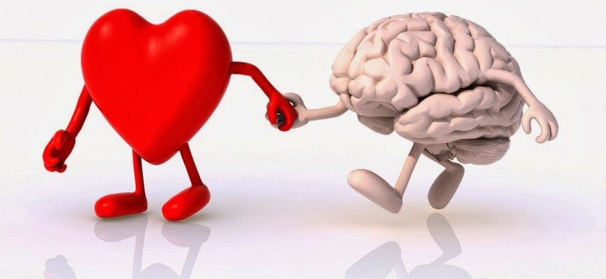 A szív és az agy
