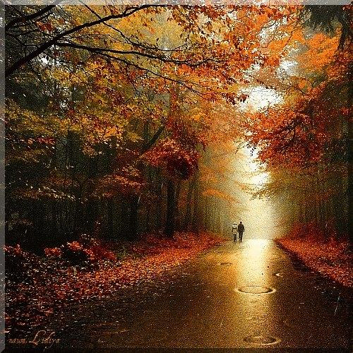 borongós őszben