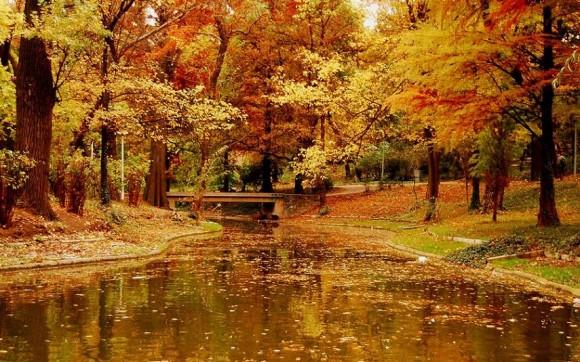 ne búslakodj az ősz miatt