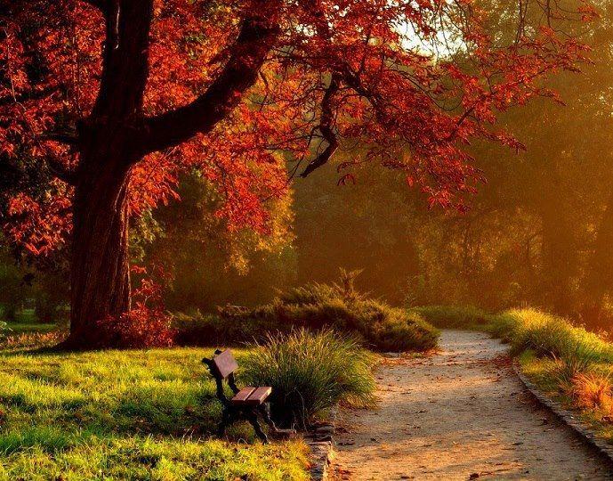 Üzen az ősz