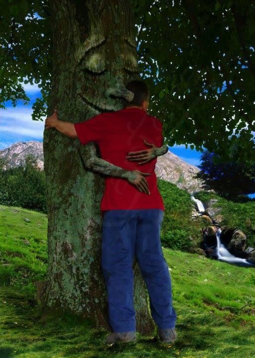 óvd a fákat