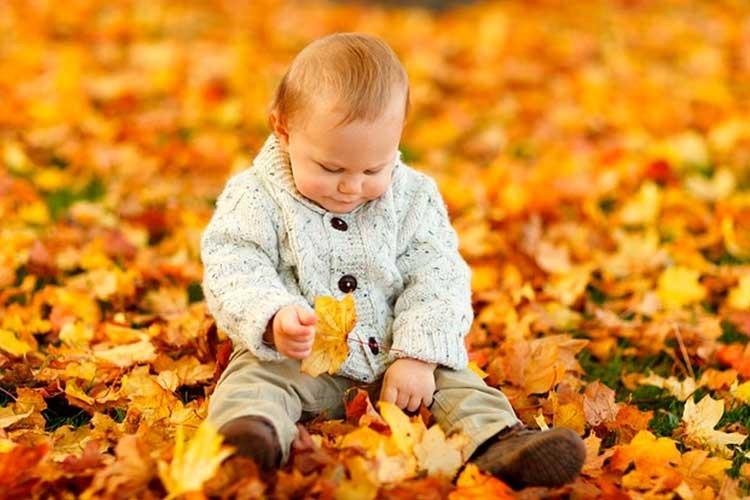 Aranyosi Ervin: Szemetel az ősz