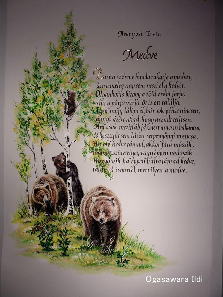 Aranyosi Ervin-Medve
