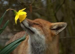 megjött a tavasz