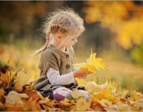 őszi napló