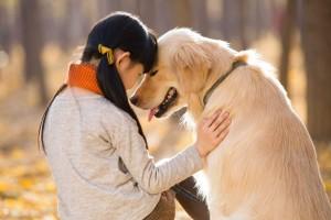 Aranyosi Ervin: A kutyád megért!
